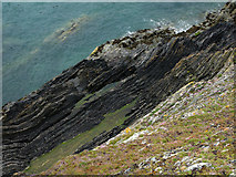 SC2484 : Rock strata, St Patrick's Isle by Chris Gunns