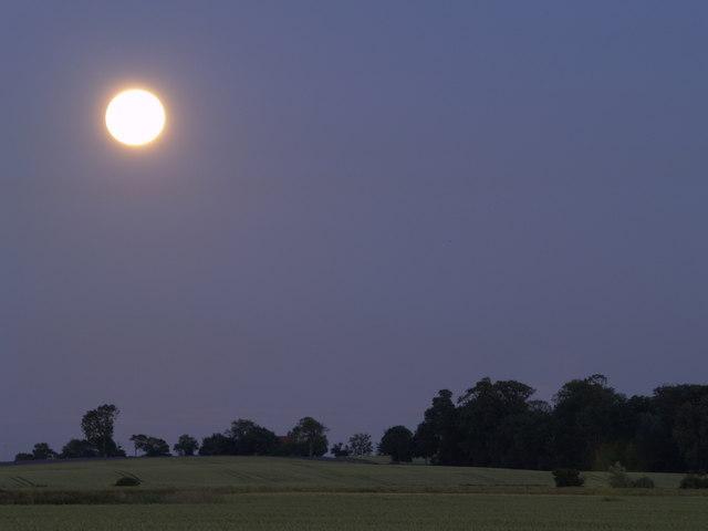 Moonlit Landscape near Dark Lane by Andy Beecroft