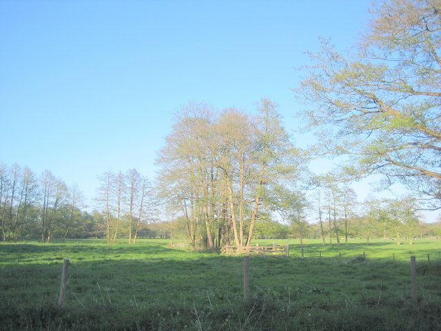View of Water Meadows from Syleham Church