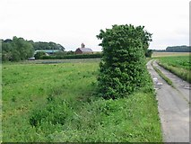 TR2854 : Little Tickenhurst Farm and access track by Nick Smith
