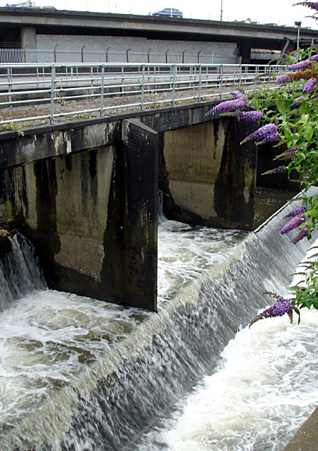 Weir on River Frome