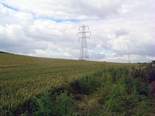 Pylons in wheat field