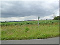 TL1669 : View east at Ellington hill by Les Harvey