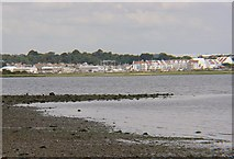 SY9890 : Moriconium Quay, Hamsworthy from  Arne by Graham Horrocks