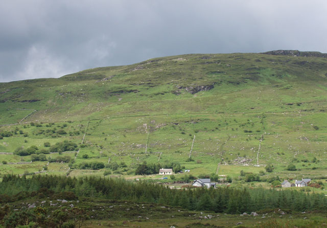 The Foxford way in foreground, crossing bogland and forestry
