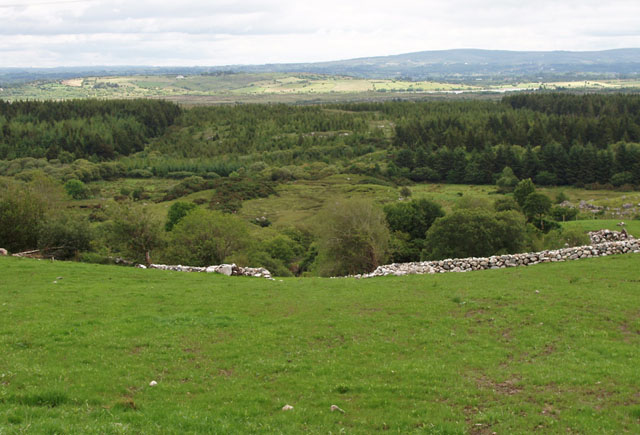Farmland and forestry looking east from Gort