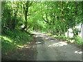 SO2600 : Coch-y-north Road by Jessica Aidley