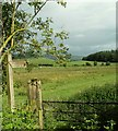 NY5153 : Bridleways to Carlatton Demesne and Morleyhill by Rose and Trev Clough