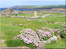HY2328 : Viking Church Remains, Brough of Birsay by Colin Smith
