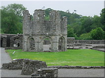 O0178 : Mellifont Abbey by jai