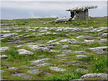 M2300 : Poulnabrone Tomb and surrounding land by jai