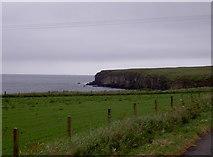 HY5042 : Cliffs, near Castle o Burrian, Rapness, Westray by Isla17