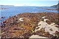 NG6115 : Rocks south of Boreraig by John Allan