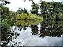C4618 : Kettle hole lake at Gransha by Kay Atherton