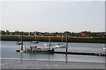 TQ8596 : Looking across to South Fambridge by Dr Neil Clifton