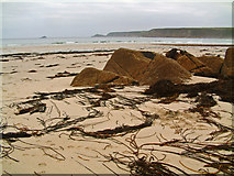 SW3526 : Seaweed at Sennen Cove by Mari Buckley