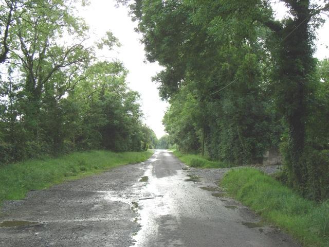Road at Grange