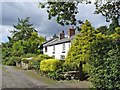 SJ5272 : Wayside Cottage, Manley Common by Mike Harris