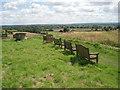 SO9564 : Hanbury churchyard by Trevor Rickard