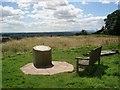 SO9564 : The toposcope at Hanbury churchyard by Trevor Rickard
