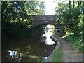 SO9159 : Bridge 30 on the Worcester & Birmingham Canal by Trevor Rickard