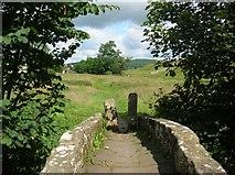 SE0063 : Packhorse bridge and squeeze stile by DS Pugh