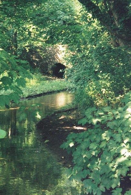 Cerne Abbas: the river Cerne