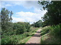 SO7640 : Path towards Black Hill (North) by Trevor Rickard