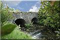 C7733 : The  Stream by Shane Killen