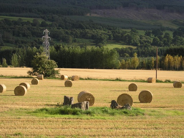 Carse Farm Stone Circle
