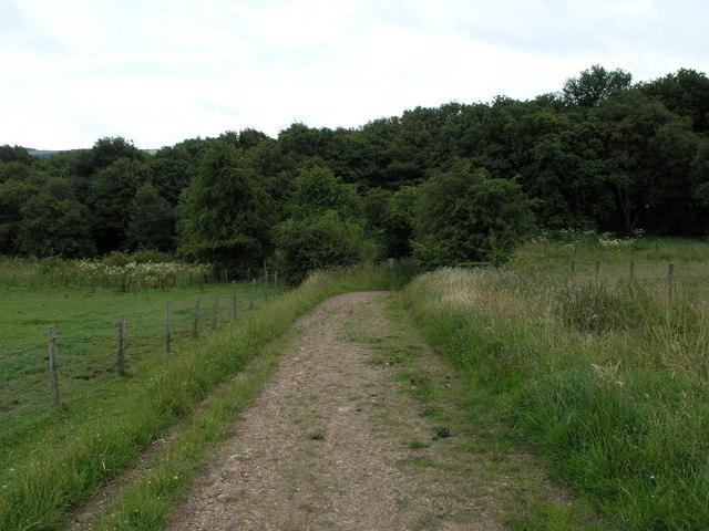 Track to Waterhouses Cemetery.