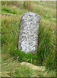 SD7942 : Stone marker by Andrew Tatlow