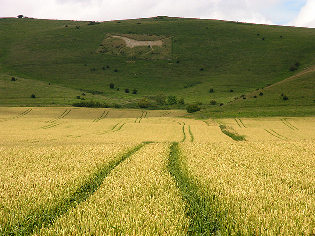 Alton Barnes: Farmland and White Horse