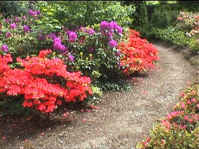 Mount Congreve gardens (supplemental #2)