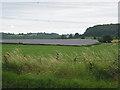 SO6422 : Farmland by the A40... by Pauline E