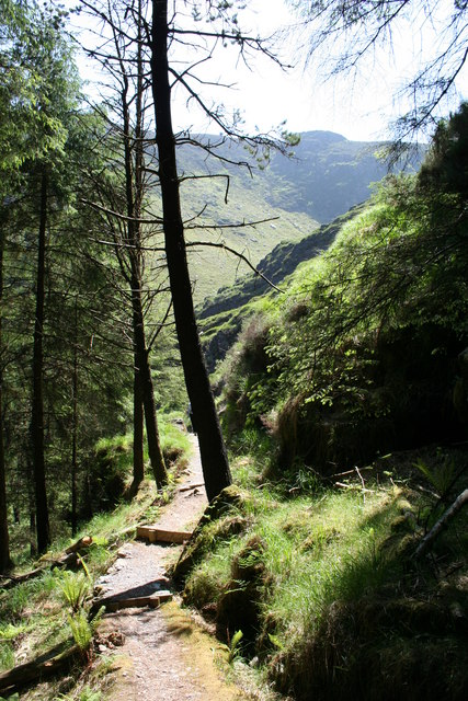 Forest Walk Gougane Barra