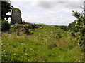 C4121 : Doherty Tower (aka Elagh Castle) by stuart r hines
