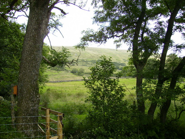 View of the hillside at North Lord's Land