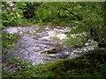 SJ0315 : River Vyrnwy, Pont Llogel by Penny Mayes