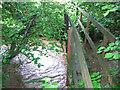 SX2257 : Footbridge over West Looe River by Ian Taylor