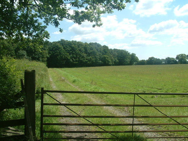 Cook's Coppice