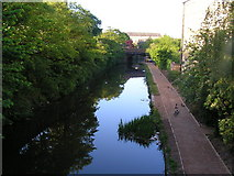 SD4861 : Lancaster Canal from Moor Lane bridge looking south by Robin Madge