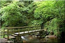 J3996 : Footbridge, Glenoe glen by Albert Bridge