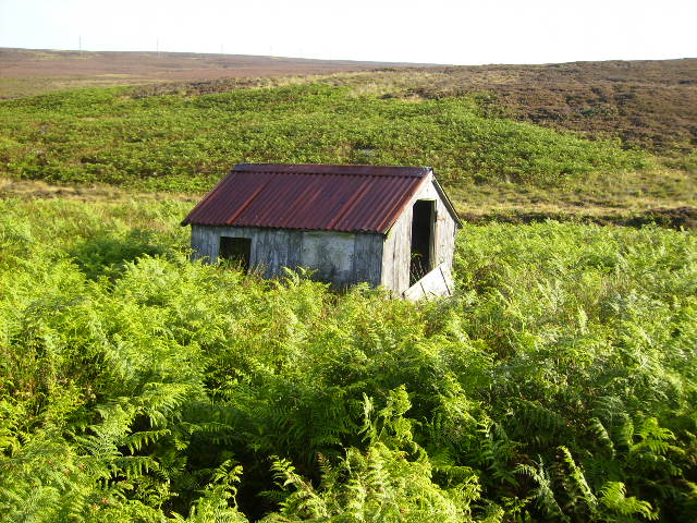 Old shed in moorland near Fylingdales