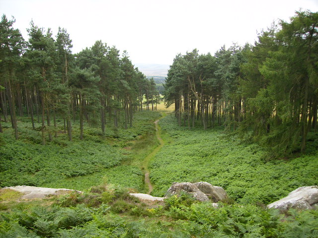 The path leading to St Cuthbert's Cave