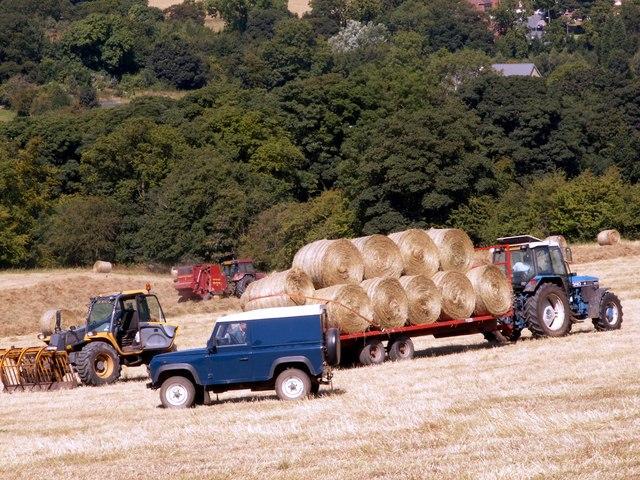 Harvesting at Silkstone Common