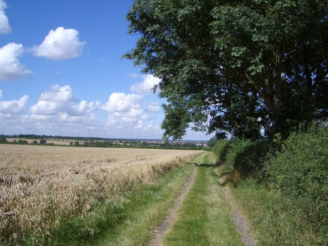 The Public Footpath to Bozeat
