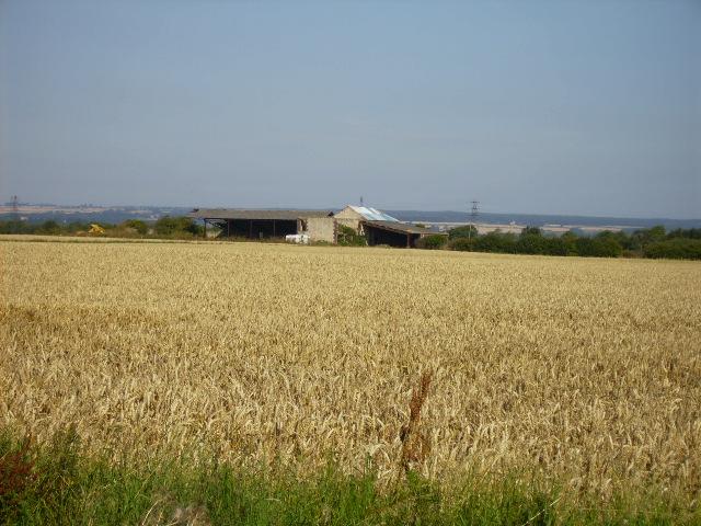 Farm buildings at Hertford Dale