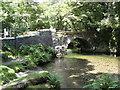 SX4970 : Grenofen Bridge over the River Walkham by Brian