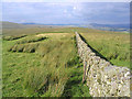NY4686 : A drystane dyke on Kirk Hill by Walter Baxter